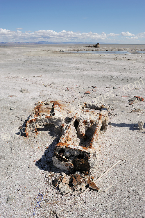 The Salton Sea has been in decline for years. Large scale fish die offs have become annual summer events since the late nineties. <br /> <br /> The major causes are believed to be the ever increasing salinity pollution from Mexico via the New River and agricultural runoff from the surrounding farmland on the southern end of the Sea. <br /> <br /> The pollutants include huge quantities of raw sewage industrial waste farm fertilizers and pesticides.