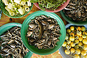 Bamboo shoots, fish, crabs, wild herbs and aubergines for sale at a roadside market in Vientiane province, Lao PDR. A large variety of local products are available for sale in roadside markets all over Laos.