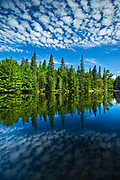 Clouds and boreal forest reflected in Canoe Lake<br />Algonquin Provincial Park<br />Ontario<br />Canada