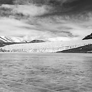 Canada Glacier from Lake Fryxell