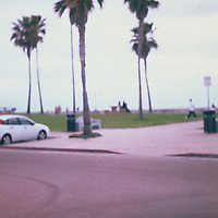 1. When was this photo taken?<br /> <br /> 2012ish<br /> <br /> 2. Where was this photo taken?<br /> <br /> La Jolla Shores Beach, California<br /> <br /> 3. Who took this photo?<br /> <br /> Me (Ryan Cardone)<br /> <br /> 4. What are we looking at here?<br /> <br /> This is the beach park at La Jolla Shores Beach in San Diego, California. <br /> <br /> 5. How does this old photo make you feel?<br /> <br /> It gives me a SoCal beach surf vibe. The colors of the velvia film give and the soft focus and the palm trees (I love palm trees by the way). <br /> <br /> I was collecting old cameras at the time and this was shot with one of them, I am sure the soft focus was a mistake but I actually really like this photo. Sometimes a mistake becomes a gem.<br /> <br /> 6. Is this what you expected to see?<br /> <br /> nope. I was so excited to see what was going to be on this roll of film.<br /> <br /> 7. What kind of memories does this photo bring back?<br /> <br /> Shooting with Velvia film. I loved that film, the colors were so good. Also just shooting film in general. I shot mostly film at this time and miss shooting film. I really enjoyed the Dark room and this photo reminds me of all the late nights processing and printing.<br /> <br /> 8. How do you think others will respond to this photo?<br /> <br /> I hope it sparks some kind of nice memory. Maybe a trip to California, or a beach day....but some might just see it as an out of focus image.....and I am ok with that. :)