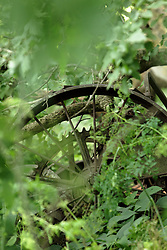 An old piece of equipment that was deserted and left to rust and rot found along the creek in Finfrock State Natural Habitat Area (Illinois)