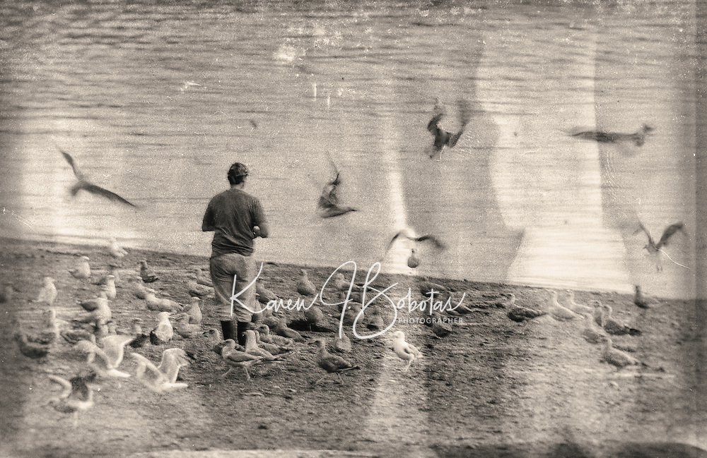 A man came to the shore just to feed the gulls.  One Word - Spooky.   ©2106 Karen Bobotas Photographer