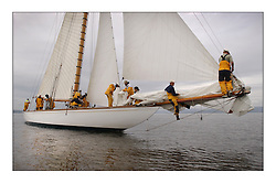 The Lady Anne, a 15 metre (95') Gaff Cutter built in 1912 originally for George Coats of Glasgow prior to the start in the Largs Channel...This the largest gathering of classic yachts designed by William Fife returned to their birth place on the Clyde to participate in the 2nd Fife Regatta. 22 Yachts from around the world participated in the event which honoured the skills of Yacht Designer Wm Fife, and his yard in Fairlie, Scotland...FAO Picture Desk..Marc Turner / PFM Pictures