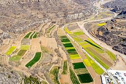 March 31, 2019 - Hebi, Hebi, China - Hebi, CHINA-Aerial photography of wheat fields can be seen in Hebi, central China's Henan Province. (Credit Image: © SIPA Asia via ZUMA Wire)