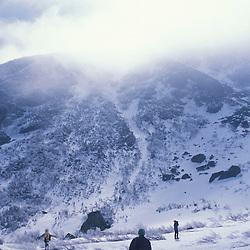 Snowshoers explore Tuckerman Ravine in New Hampshire's White Mountain National Forest.  Mt. Washington. Pinkham's Grant, NH
