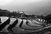 Rice terraces. Ta Van, Vietnam. January/2018.