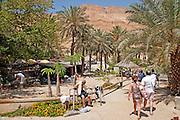 Israel, Dead Sea, Ein Gedi Resort and Spa