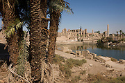 A dusty landscape of palm trees and the Sacred Lake at the ancient Egyptian Temple of Karnak, Luxor, Nile Valley, Egypt.