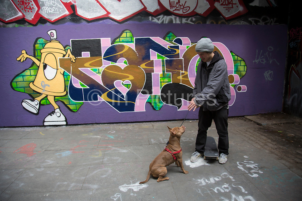 Skater takes his friend's dog out for a walk / skate at the Undercroft. The undercroft of the foyer building of the Queen Elizabeth Hall on the South Bank has been popular with skateboarders since the early 70's and it is widely acknowledged to be London's most distinctive and popular skateboarding area. The area is used by skateboarders, BMXers, graffiti artists, taggers, photographers, buskers, and performance artists, among others.