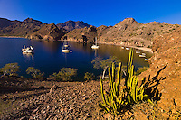 The Ursa Major (charter yacht) and sailboats anchored in Agua Verde bay, Sea of Cortes, Baja California Sur, Mexico