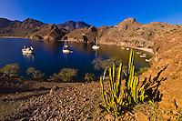 The Ursa Major (charter yacht) and sailboats anchored in Agua Verde bay, Sea of Cortes, Baja California Sur, Mexico