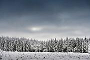 Jalhay, Belgium, 9 jan 2021, Scenes during the first snow at Belgian Hautes Fagnes