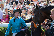 Brown Panther and jockey Richard Kingscote, Glorious Goodwood. Thursday.  Sussex. 3 August 2013