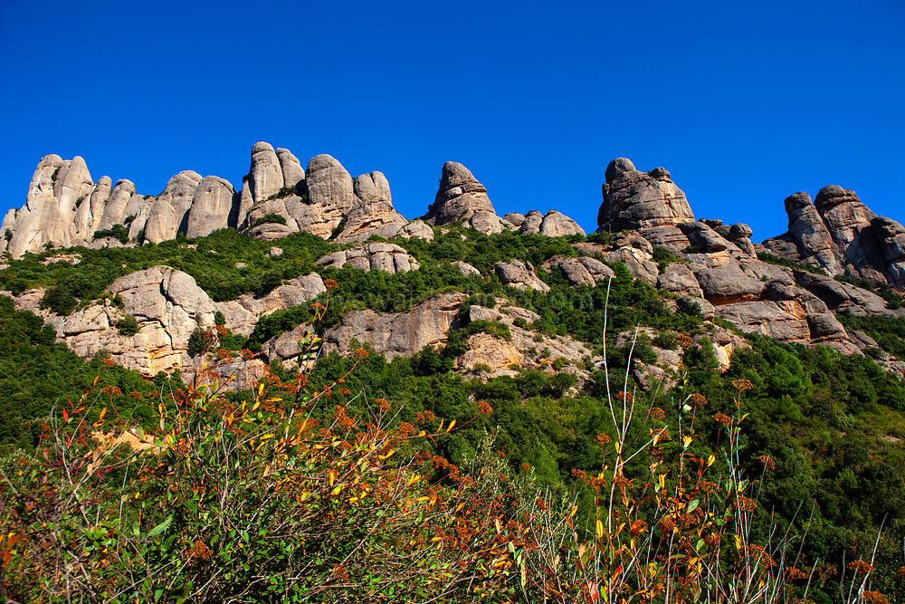 Autumn colours on the mountain of Montserrat, near Barcelona, Catalonia, Spain