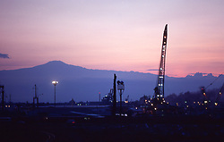 Stock photo of crane at sunset in Cameroon,West Africa