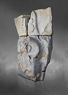 Fragment of a Hittite sphinx sculpture, Hittite capital Hattusa, Hittite New Kingdom 13th cent BC, Bogazkale archaeological Museum, Turkey. Grey background