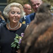 NLD/Leeuwarden/20180908 - Koning Willem Alexander en Beatrix aanwezig bij premiere de Stormruiter, Prinses Beatrix kijkt naar een roofvogel