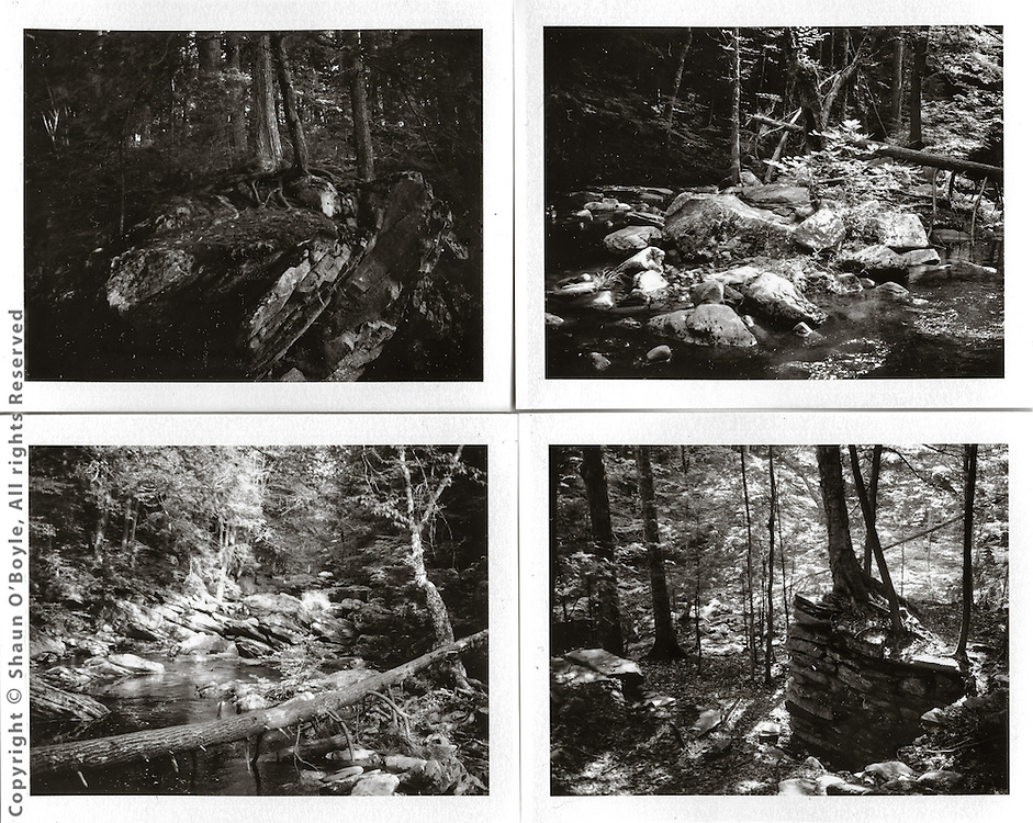 Walk along Wahconah Falls Brook,<br /> photographed with 50 year old Polaroid Land 250 camera and Fuji FP-3000 instant B&W film