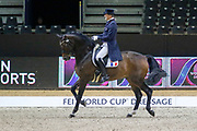 Ludovic Henry on After You during the Equestrian FEI World Cup Dressage Lyon 2017 on November 2, 2017 at Eurexpo Lyon in Chassieu, near Lyon, France - Photo Romain Biard / Isports / ProSportsImages / DPPI