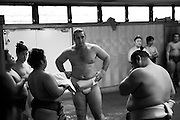 Bulgarian born  Kotooshuu, real name Kaloyan Stefanov Mahlyanov, who is the sport's top-ranked Western wrestler, and one of Sado Gatake's biggest earners..Morning  workout session in the Sado Gatake stable, 30 minutes west of Tokyo,