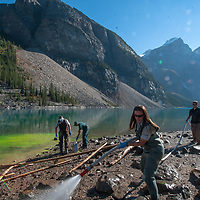 Employees of Canada's Banff National Park struggle to remove green dye poured onto the shoreline of Moraine Lake by a misguided visitor.