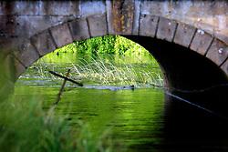 UK ENGLAND WEST BERKSHIRE HUNGERFORD 26JUN08 - Road bridge over the river Kennet in  Hungerford in West Berkshire, western England...jre/Photo by Jiri Rezac / WWF UK..© Jiri Rezac 2008..Contact: +44 (0) 7050 110 417.Mobile:  +44 (0) 7801 337 683.Office:  +44 (0) 20 8968 9635..Email:   jiri@jirirezac.com.Web:     www.jirirezac.com..© All images Jiri Rezac 2008 - All rights reserved.