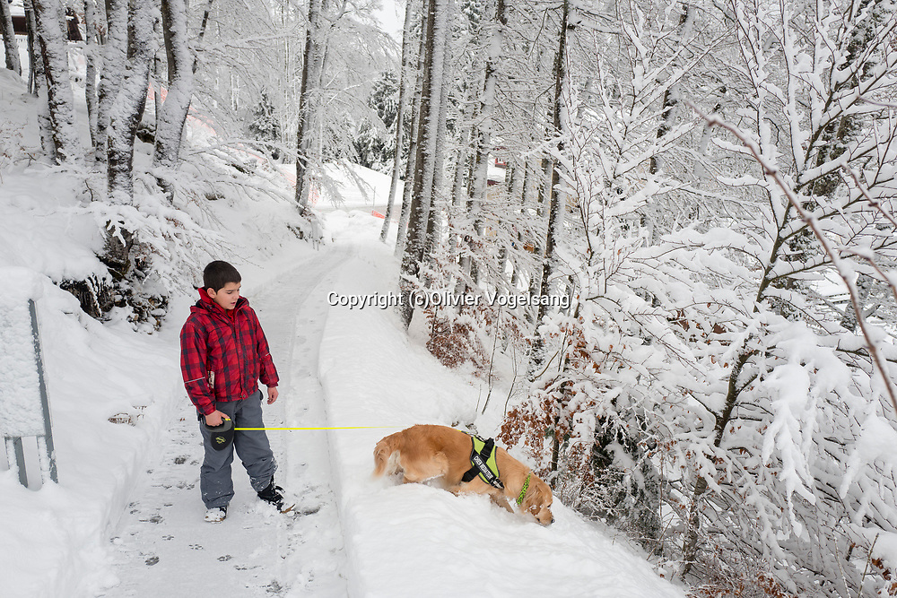 Saint-Cergue, décembre 2017. reportage dans une école spécialisée à St-Cergue, dans laquelle un chien scolaire est utilisé depuis le début de l'année pour venir en aide et calmer les élèves. C'est le premier chien à être utilisé de la sorte en Suisse romande. Promenade pour Tahiti. © Olivier Vogelsang