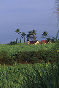 Church, West Kauai, Hawaii<br />