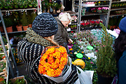 A young woman has bought a buch of orange flowers. Columbia Road flower market is held every Sunday and it attracts shoppers from afar. The huge variety in plants and flowers makes it a popular place to shop and the banter between the traders and the quick deals there is to be made makes it a very entertaining place to go.