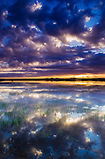 Wetlands at sunrise, Bosque del Apache National Wildlife Refuge, New Mexico