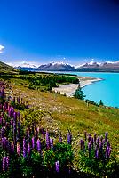 Lake Pukaki, South Island, New Zealand.