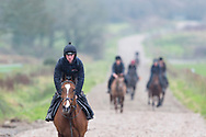 Racing stables run by Peter Bowen in Pembrokeshire, west Wales exercising horses early in the morning.