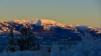 Warm sunlight on a cold Yukon day makes for beautiful colours on Grey Mountain