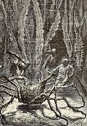 A monstrous sea-spider From the Book Twenty thousand leagues under the seas, or, The marvelous and exciting adventures of Pierre Aronnax, Conseil his servant, and Ned Land, a Canadian harpooner by Verne, Jules, 1828-1905 Published in Boston by J.R. Osgood in 1875