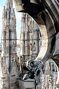 Milan, detail of the Duomo from the rooftop
