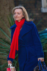 Downing Street, London, January 20th 2015. Ministers attend the weekly cabinet meeting at Downing Street. PICTURED: Elizabeth Truss MP, <br /> Secretary of State for Environment, Food and Rural Affairs