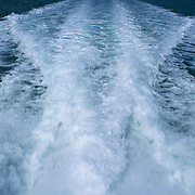 Speedboat's wake foams the surface of Biscayne Bay, Biscayne National Park, Miami, FL.