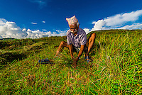 A Nepalese man collecting grass,
