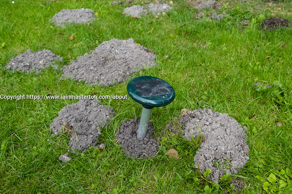 Electronic solar powered noise and vibration device to deter burrowing moles in a garden lawn