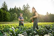 Katie and Tayne, co-owners of Fiddlehead Farm in Corbett, Oregon.