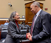 Founding SNCC civil rights leaders Diane Nash and Representative William Clay (D-MO) greet each other following Ms. Nash's testimony on current issues facing voting rights.