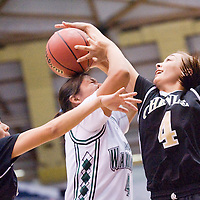 021613       Cable Hoover<br /> <br /> Tuba City Warrior Samytha Parrish (4) is blocked by Chinle Wildcat Nadia Natay (4) during the Arizona State Tournament at the NAU Walkup Skydome in Flagstaff Saturday.