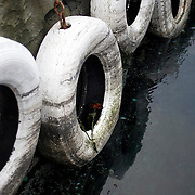 Noorwegen Bergen 30 december 2008 20081230 Foto: David Rozing .Havenstad Bergen, haven. Stootkussens voor aanleg schepen en boten. In een vd banden liggen 2 rozen .The city of Bergen, harbour, boat. ..Foto: David Rozing