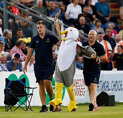 A Glamorgan fan is escorted from the stadium<br /> <br /> Photographer Simon King/Replay Images<br /> <br /> Vitality Blast T20 - Round 8 - Glamorgan v Gloucestershire - Friday 3rd August 2018 - Sophia Gardens - Cardiff<br /> <br /> World Copyright © Replay Images . All rights reserved. info@replayimages.co.uk - http://replayimages.co.uk