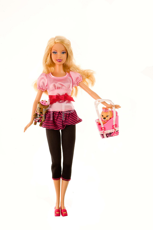 Barbi doll toy with her pets - I Can Be - Pet Chic Boutique 2008