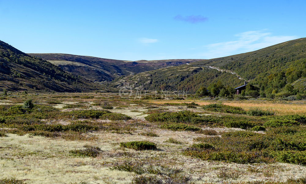 The beautiful valley Gimsdalen, branching off the bigger Folldal, is a protected nature reserve in Innlandet, Norway.