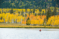 Fishing in a pond surrounded by fall colors,  Dixie National Forest, Utah.