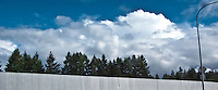 a panorama of a wall with a row of conifers beyond with cumulus clouds against a blue sky in the background.