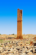 """Pictures of the Arabic astrological observation tower of the 8th century University of  of Harran, south west Anatolia, Turkey.  Harran was a major ancient city in Upper Mesopotamia whose site is near the modern village of Altınbaşak, Turkey, 24 miles (44 kilometers) southeast of Şanlıurfa. The location is in a district of Şanlıurfa Province that is also named """"Harran"""". Harran is famous for its traditional 'beehive' adobe houses, constructed entirely without wood. The design of these makes them cool inside. 51 .<br /> <br /> If you prefer to buy from our ALAMY PHOTO LIBRARY  Collection visit : https://www.alamy.com/portfolio/paul-williams-funkystock/harran.html<br /> <br /> Visit our TURKEY PHOTO COLLECTIONS for more photos to download or buy as wall art prints https://funkystock.photoshelter.com/gallery-collection/3f-Pictures-of-Turkey-Turkey-Photos-Images-Fotos/C0000U.hJWkZxAbg ."""